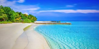 the top beaches in the world